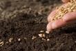 soil of human flourishing