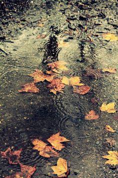 fall-sadness